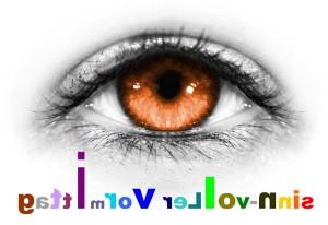 Auge2_verkehrtweb